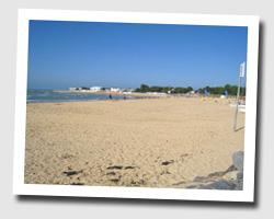image CP la_tranche_sur_mer