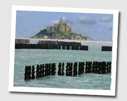 image CP le_vivier_sur_mer