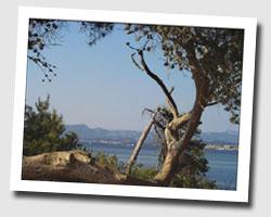 image CP six_fours_les_plages