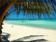 ecolodge-rangiroa chez booking.com